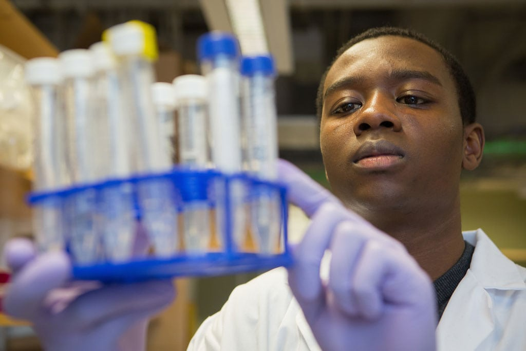 A student in a white lab coat holds up test tubes while wearing gloves in the Marta Gaglia lab on the Boston Campus.